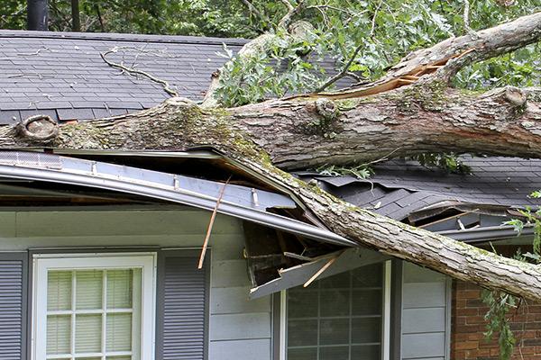 Roof Storm Damage Repair Woodberg Roofing